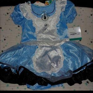 Other - Alice in Wonderland costume